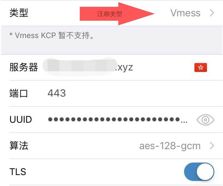 手动添加 vmess 服务器